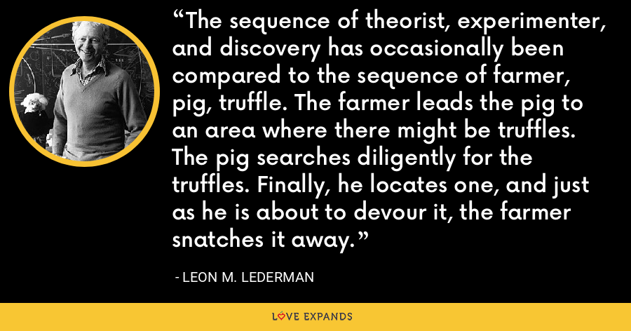 The sequence of theorist, experimenter, and discovery has occasionally been compared to the sequence of farmer, pig, truffle. The farmer leads the pig to an area where there might be truffles. The pig searches diligently for the truffles. Finally, he locates one, and just as he is about to devour it, the farmer snatches it away. - Leon M. Lederman