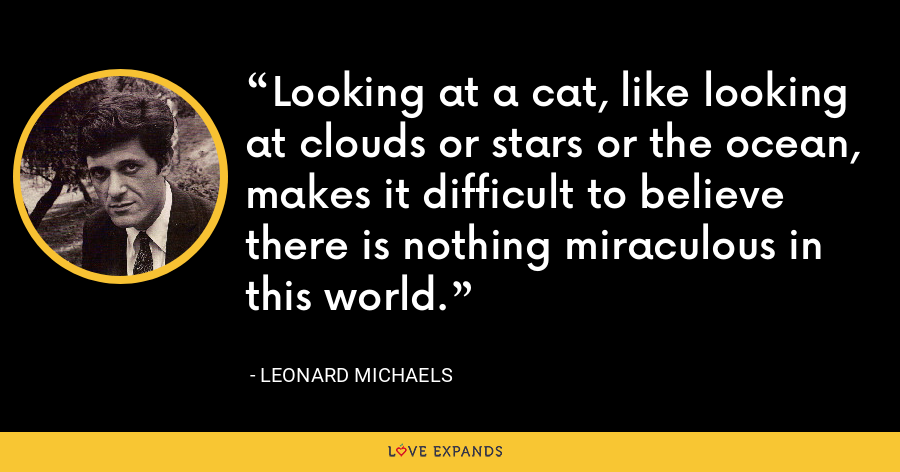 Looking at a cat, like looking at clouds or stars or the ocean, makes it difficult to believe there is nothing miraculous in this world. - Leonard Michaels