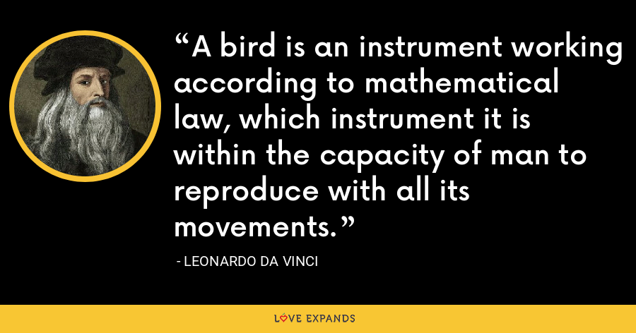 A bird is an instrument working according to mathematical law, which instrument it is within the capacity of man to reproduce with all its movements. - Leonardo da Vinci