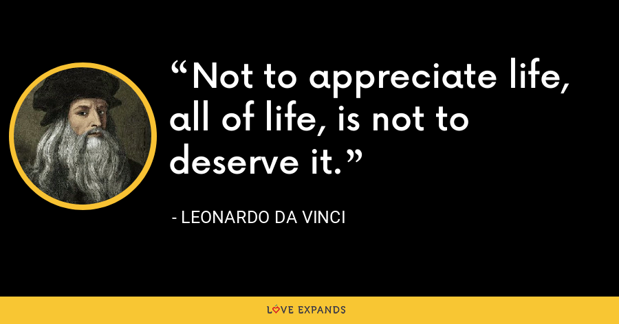 Not to appreciate life, all of life, is not to deserve it. - Leonardo da Vinci