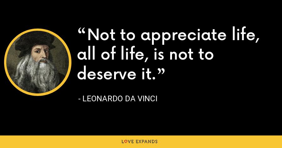 Not to appreciate life, all of life, is not to deserve it. - Leonardo da Vinci