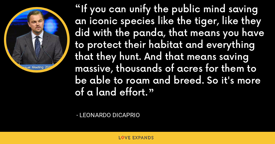 If you can unify the public mind saving an iconic species like the tiger, like they did with the panda, that means you have to protect their habitat and everything that they hunt. And that means saving massive, thousands of acres for them to be able to roam and breed. So it's more of a land effort. - Leonardo DiCaprio