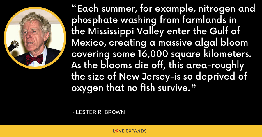 Each summer, for example, nitrogen and phosphate washing from farmlands in the Mississippi Valley enter the Gulf of Mexico, creating a massive algal bloom covering some 16,000 square kilometers. As the blooms die off, this area-roughly the size of New Jersey-is so deprived of oxygen that no fish survive. - Lester R. Brown