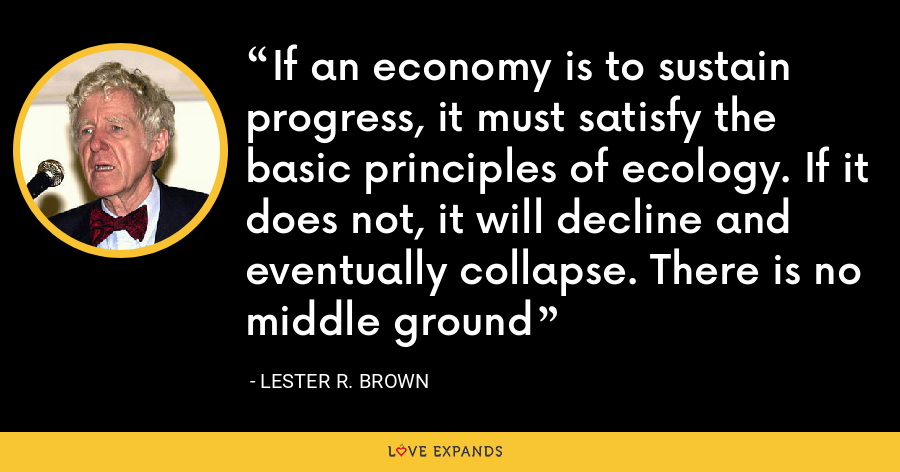 If an economy is to sustain progress, it must satisfy the basic principles of ecology. If it does not, it will decline and eventually collapse. There is no middle ground - Lester R. Brown