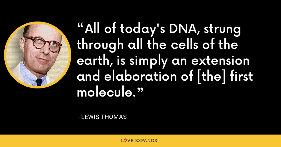 All of today's DNA, strung through all the cells of the earth, is simply an extension and elaboration of [the] first molecule. - Lewis Thomas