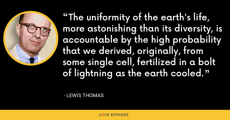 The uniformity of the earth's life, more astonishing than its diversity, is accountable by the high probability that we derived, originally, from some single cell, fertilized in a bolt of lightning as the earth cooled. - Lewis Thomas