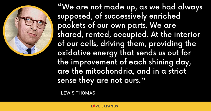 We are not made up, as we had always supposed, of successively enriched packets of our own parts. We are shared, rented, occupied. At the interior of our cells, driving them, providing the oxidative energy that sends us out for the improvement of each shining day, are the mitochondria, and in a strict sense they are not ours. - Lewis Thomas