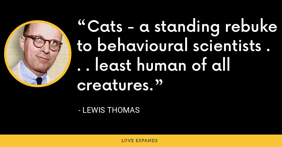 Cats - a standing rebuke to behavioural scientists . . . least human of all creatures. - Lewis Thomas