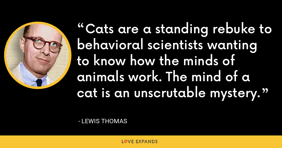 Cats are a standing rebuke to behavioral scientists wanting to know how the minds of animals work. The mind of a cat is an unscrutable mystery. - Lewis Thomas