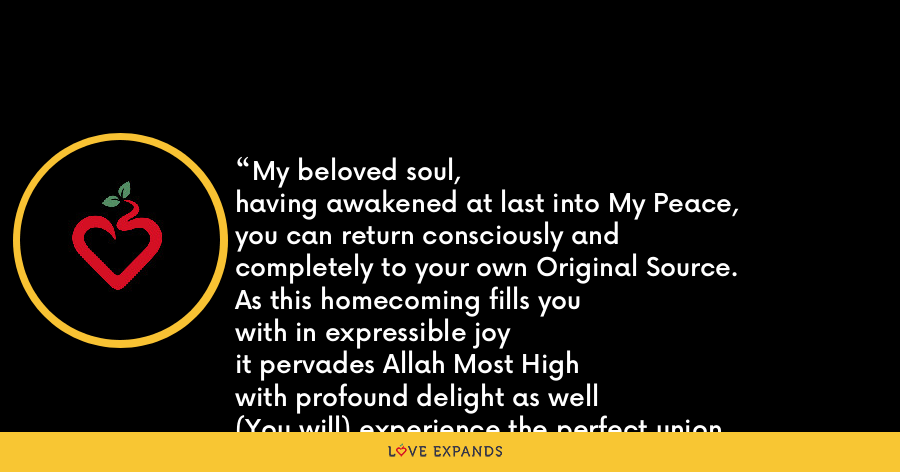 My beloved soul, having awakened at last into My Peace, you can return consciously and completely to your own Original Source. As this homecoming fills you with in expressible joy it pervades Allah Most High with profound delight as well (You will) experience the perfect union with Love that is My highest Paradise. - Lex Hixon