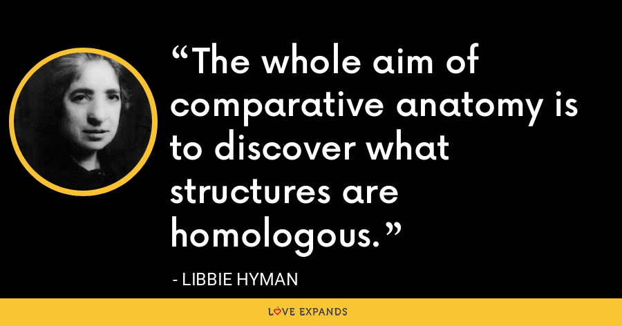 The whole aim of comparative anatomy is to discover what structures are homologous. - Libbie Hyman