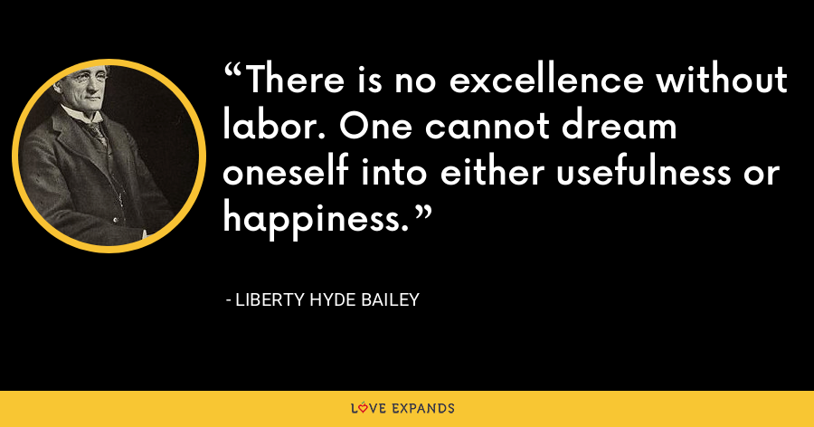 There is no excellence without labor. One cannot dream oneself into either usefulness or happiness. - Liberty Hyde Bailey
