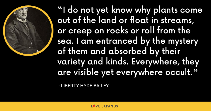 I do not yet know why plants come out of the land or float in streams, or creep on rocks or roll from the sea. I am entranced by the mystery of them and absorbed by their variety and kinds. Everywhere, they are visible yet everywhere occult. - Liberty Hyde Bailey