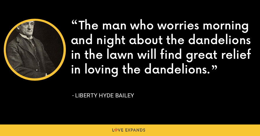 The man who worries morning and night about the dandelions in the lawn will find great relief in loving the dandelions. - Liberty Hyde Bailey