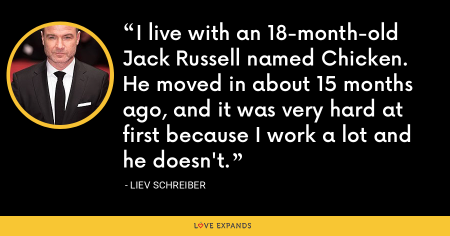 I live with an 18-month-old Jack Russell named Chicken. He moved in about 15 months ago, and it was very hard at first because I work a lot and he doesn't. - Liev Schreiber