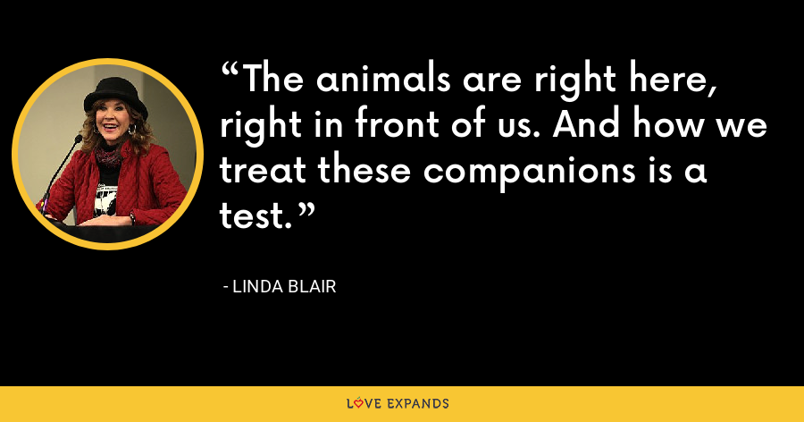 The animals are right here, right in front of us. And how we treat these companions is a test. - Linda Blair