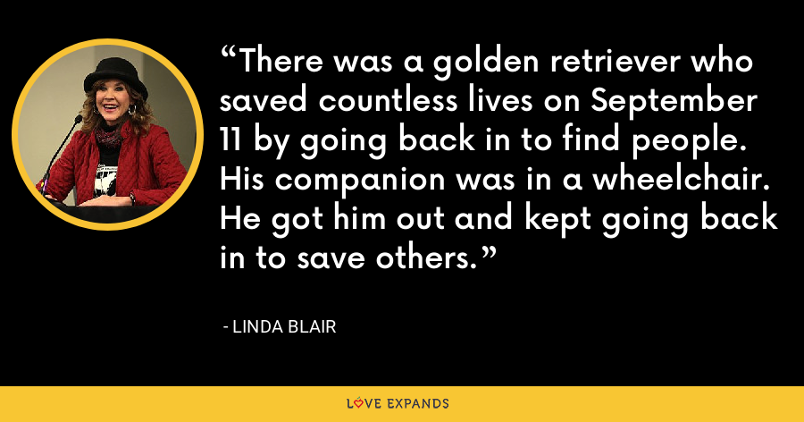 There was a golden retriever who saved countless lives on September 11 by going back in to find people. His companion was in a wheelchair. He got him out and kept going back in to save others. - Linda Blair