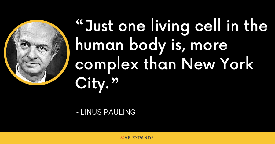 Just one living cell in the human body is, more complex than New York City. - Linus Pauling