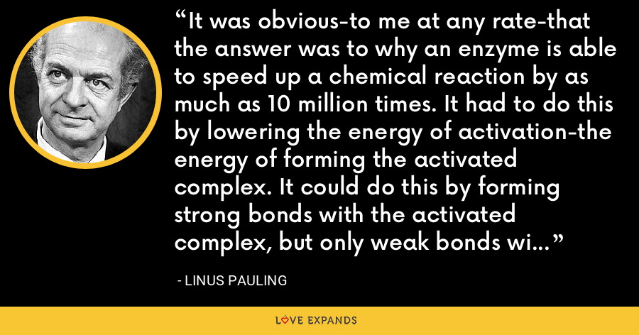 It was obvious-to me at any rate-that the answer was to why an enzyme is able to speed up a chemical reaction by as much as 10 million times. It had to do this by lowering the energy of activation-the energy of forming the activated complex. It could do this by forming strong bonds with the activated complex, but only weak bonds with the reactants or products. - Linus Pauling