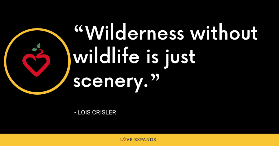 Wilderness without wildlife is just scenery. - Lois Crisler