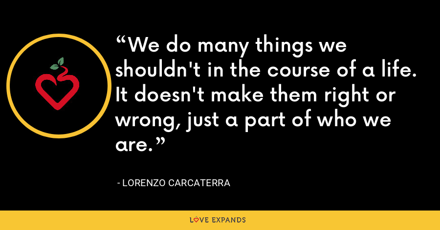 We do many things we shouldn't in the course of a life. It doesn't make them right or wrong, just a part of who we are. - Lorenzo Carcaterra
