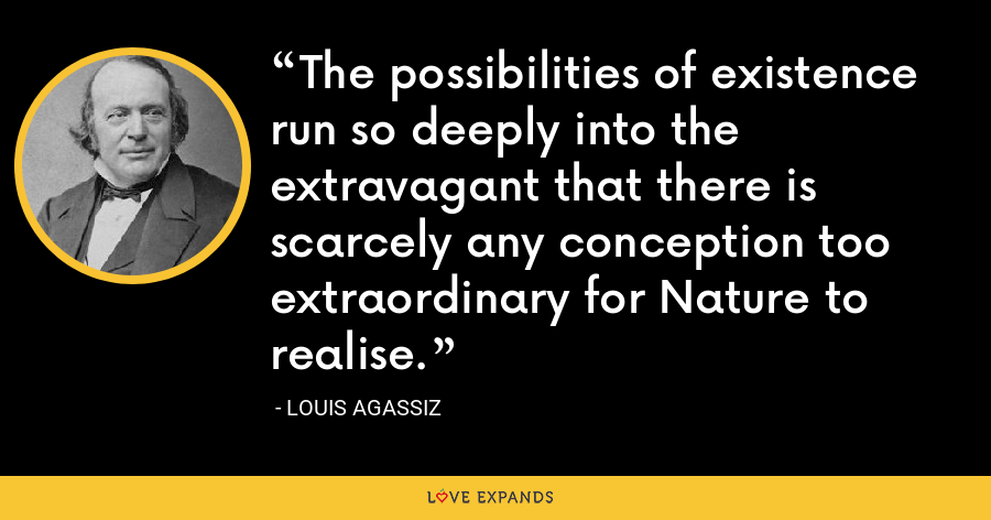 The possibilities of existence run so deeply into the extravagant that there is scarcely any conception too extraordinary for Nature to realise. - Louis Agassiz