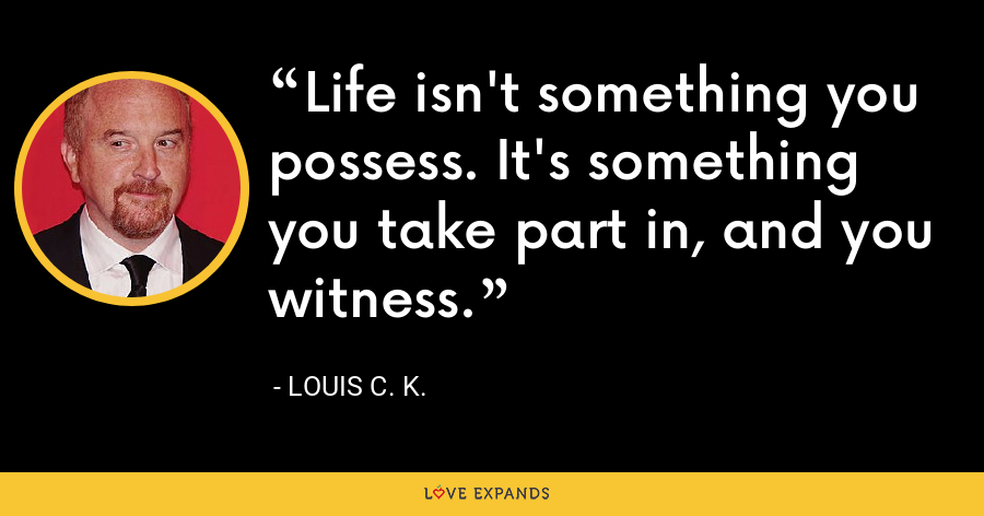 Life isn't something you possess. It's something you take part in, and you witness. - Louis C. K.