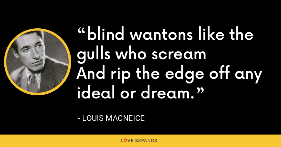 blind wantons like the gulls who screamAnd rip the edge off any ideal or dream. - Louis MacNeice