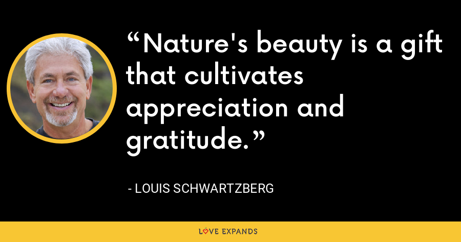 Nature's beauty is a gift that cultivates appreciation and gratitude. - Louis Schwartzberg