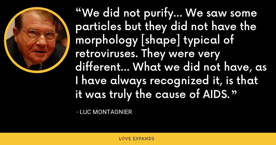 We did not purify... We saw some particles but they did not have the morphology [shape] typical of retroviruses. They were very different... What we did not have, as I have always recognized it, is that it was truly the cause of AIDS. - Luc Montagnier