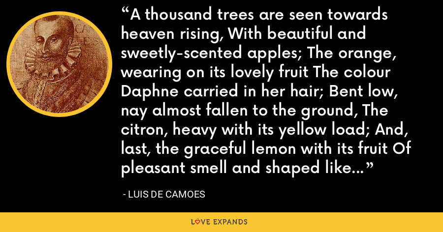 A thousand trees are seen towards heaven rising, With beautiful and sweetly-scented apples; The orange, wearing on its lovely fruit The colour Daphne carried in her hair; Bent low, nay almost fallen to the ground, The citron, heavy with its yellow load; And, last, the graceful lemon with its fruit Of pleasant smell and shaped like virgins' breasts. - Luis de Camoes