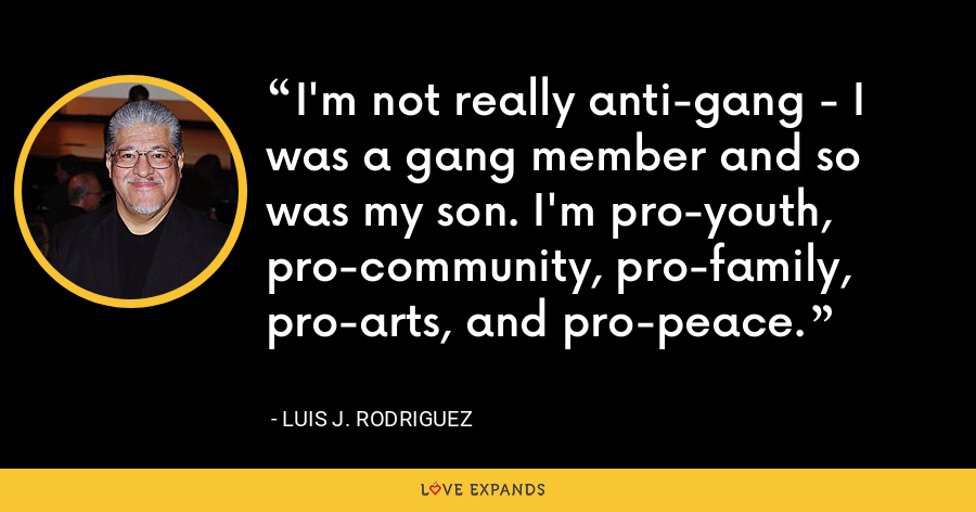 I'm not really anti-gang - I was a gang member and so was my son. I'm pro-youth, pro-community, pro-family, pro-arts, and pro-peace. - Luis J. Rodriguez