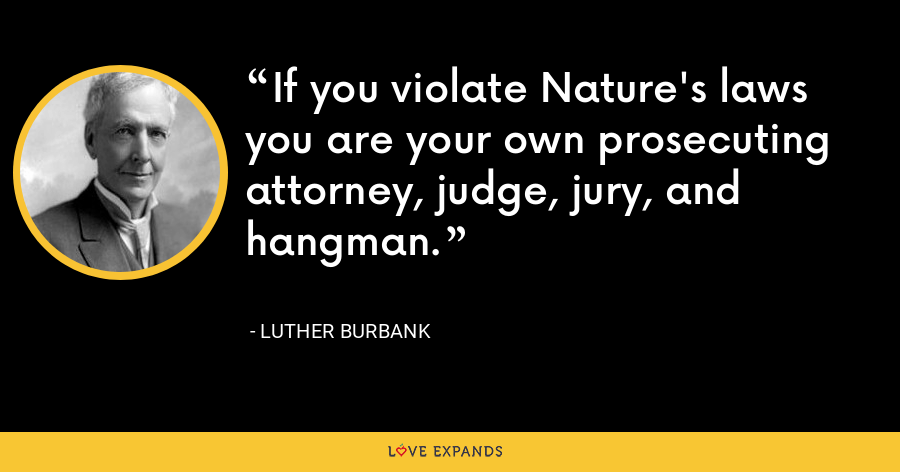If you violate Nature's laws you are your own prosecuting attorney, judge, jury, and hangman. - Luther Burbank