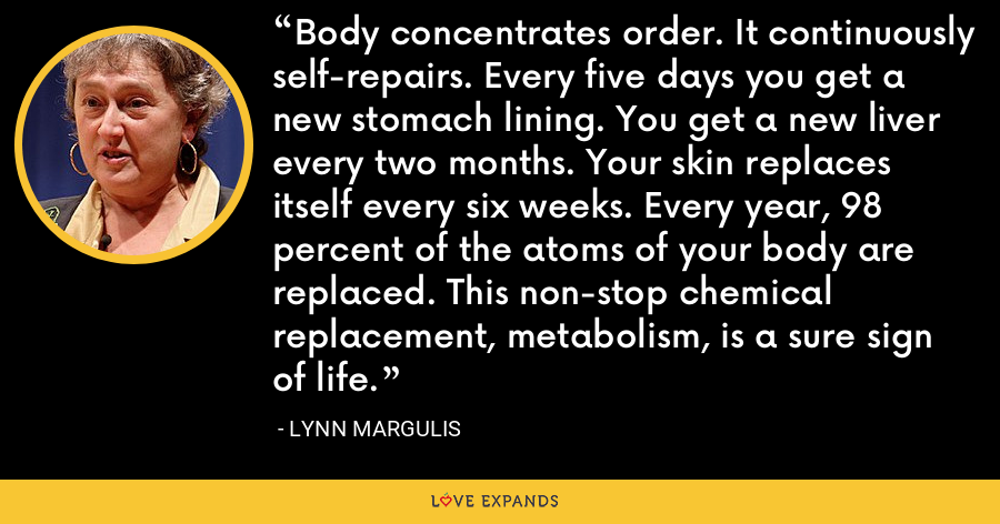 Body concentrates order. It continuously self-repairs. Every five days you get a new stomach lining. You get a new liver every two months. Your skin replaces itself every six weeks. Every year, 98 percent of the atoms of your body are replaced. This non-stop chemical replacement, metabolism, is a sure sign of life. - Lynn Margulis