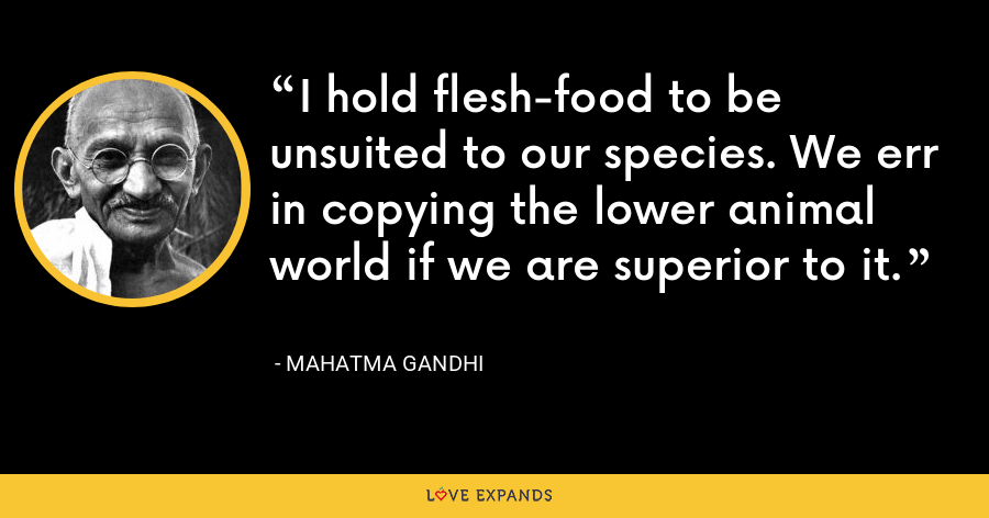 I hold flesh-food to be unsuited to our species. We err in copying the lower animal world if we are superior to it. - Mahatma Gandhi