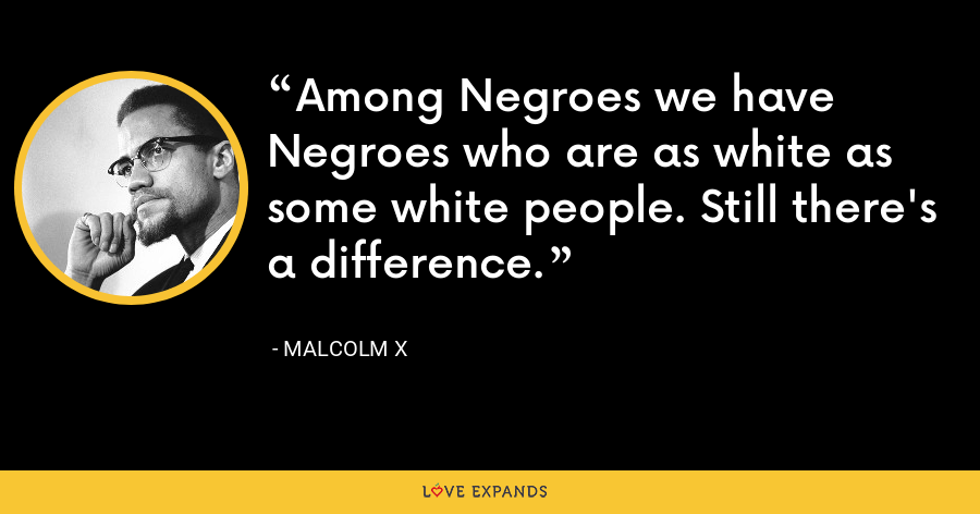 Among Negroes we have Negroes who are as white as some white people. Still there's a difference. - Malcolm X
