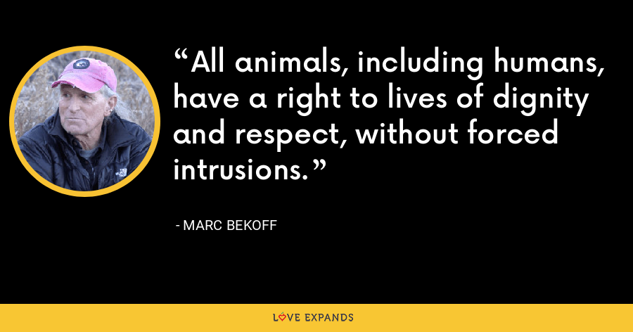 All animals, including humans, have a right to lives of dignity and respect, without forced intrusions. - Marc Bekoff