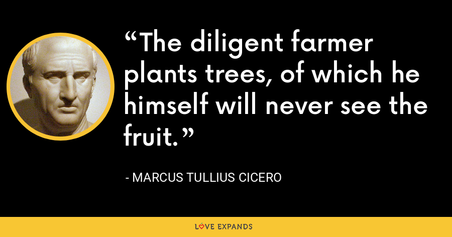 The diligent farmer plants trees, of which he himself will never see the fruit. - Marcus Tullius Cicero