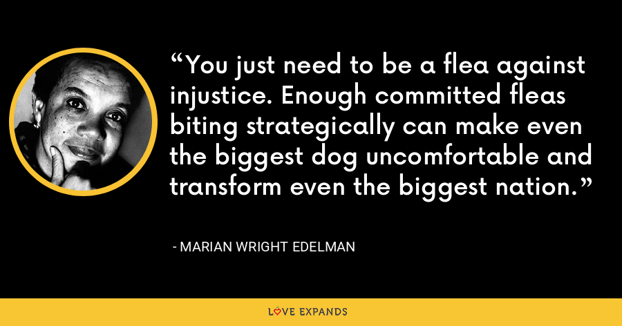 You just need to be a flea against injustice. Enough committed fleas biting strategically can make even the biggest dog uncomfortable and transform even the biggest nation. - Marian Wright Edelman