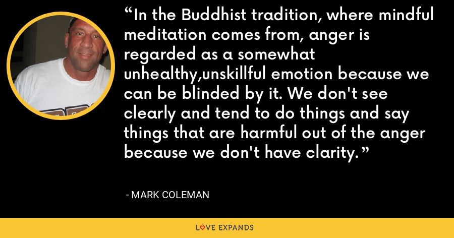 In the Buddhist tradition, where mindful meditation comes from, anger is regarded as a somewhat unhealthy,unskillful emotion because we can be blinded by it. We don't see clearly and tend to do things and say things that are harmful out of the anger because we don't have clarity. - Mark Coleman