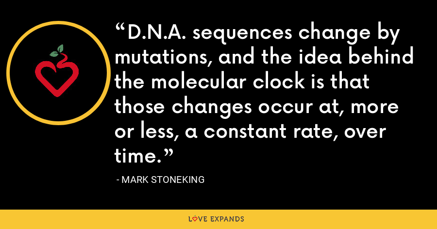 D.N.A. sequences change by mutations, and the idea behind the molecular clock is that those changes occur at, more or less, a constant rate, over time. - Mark Stoneking