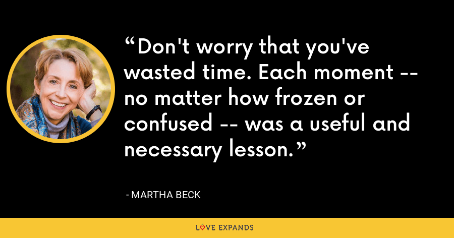 Don't worry that you've wasted time. Each moment -- no matter how frozen or confused -- was a useful and necessary lesson. - Martha Beck