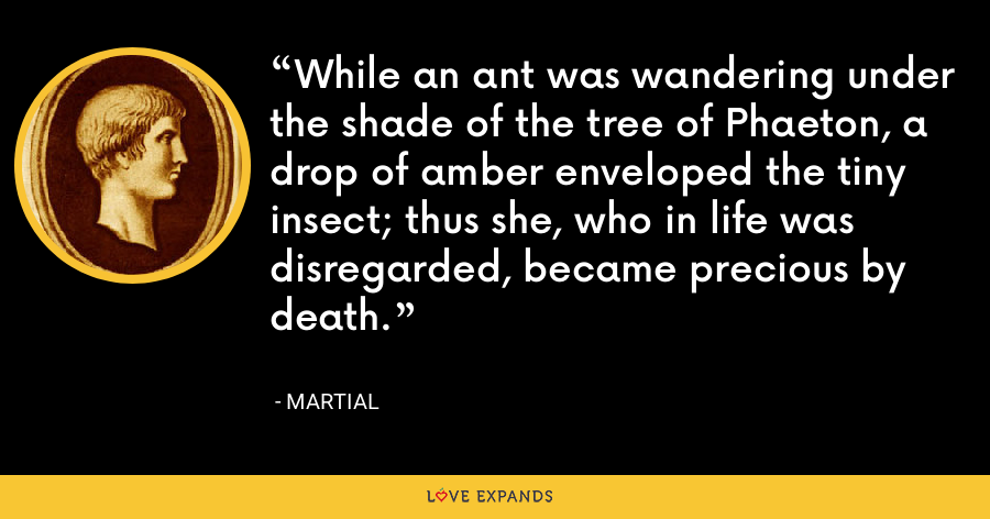 While an ant was wandering under the shade of the tree of Phaeton, a drop of amber enveloped the tiny insect; thus she, who in life was disregarded, became precious by death. - Martial