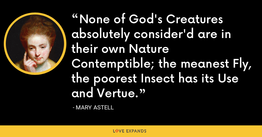 None of God's Creatures absolutely consider'd are in their own Nature Contemptible; the meanest Fly, the poorest Insect has its Use and Vertue. - Mary Astell