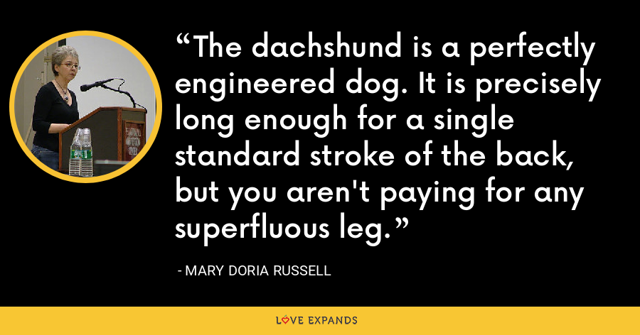 The dachshund is a perfectly engineered dog. It is precisely long enough for a single standard stroke of the back, but you aren't paying for any superfluous leg. - Mary Doria Russell