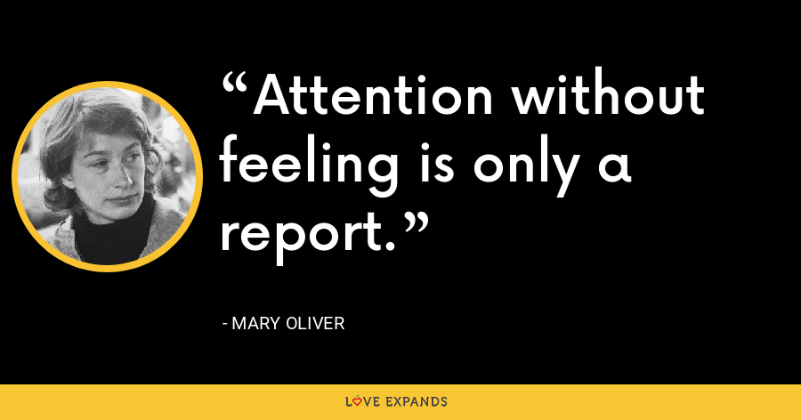 Attention without feeling is only a report. - Mary Oliver