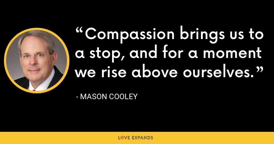 Compassion brings us to a stop, and for a moment we rise above ourselves. - Mason Cooley