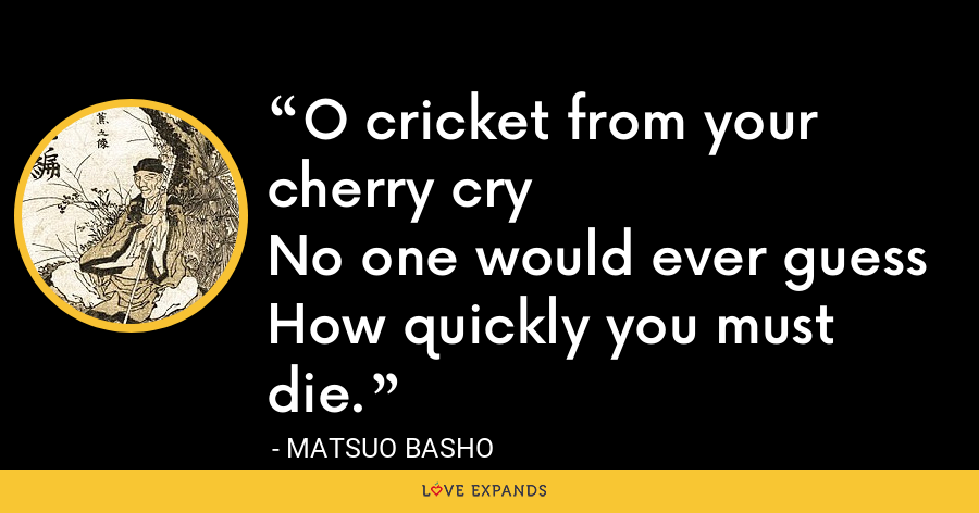 O cricket from your cherry cryNo one would ever guessHow quickly you must die. - Matsuo Basho