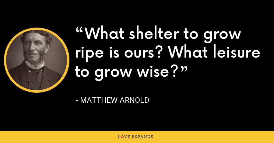 What shelter to grow ripe is ours? What leisure to grow wise? - Matthew Arnold