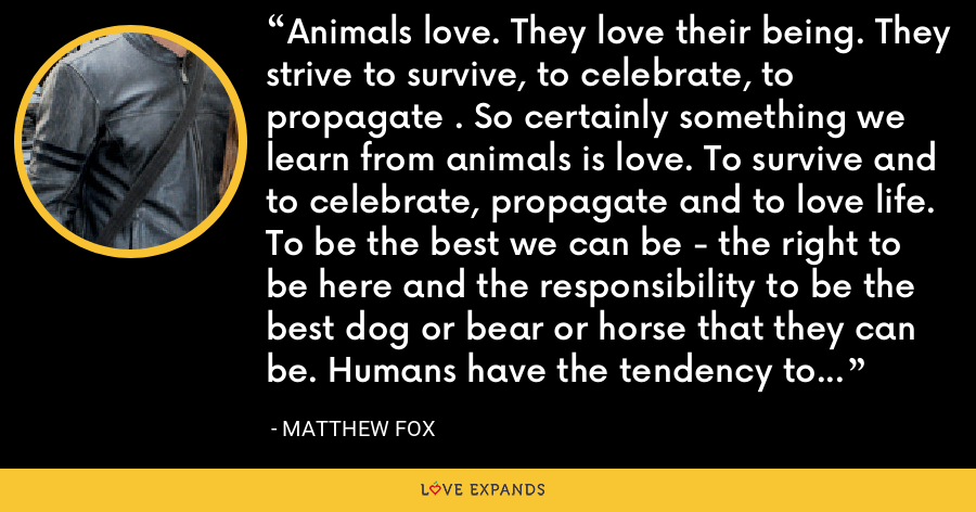Animals love. They love their being. They strive to survive, to celebrate, to propagate . So certainly something we learn from animals is love. To survive and to celebrate, propagate and to love life. To be the best we can be - the right to be here and the responsibility to be the best dog or bear or horse that they can be. Humans have the tendency to self pity that other animals don't indulge in. - Matthew Fox